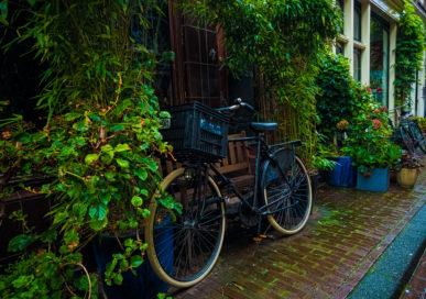 Vélo Amsterdam
