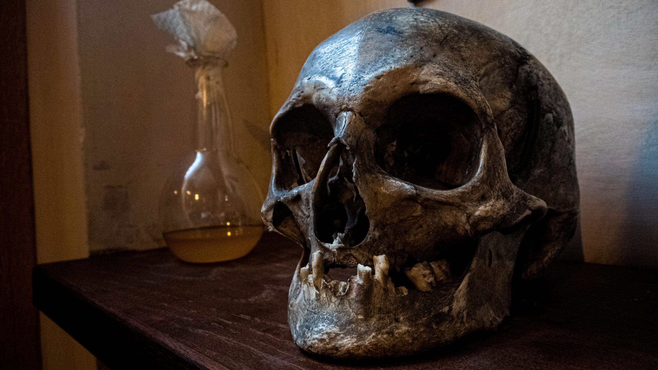 Crâne et fiole du Musée de la Maison de Rembrandt